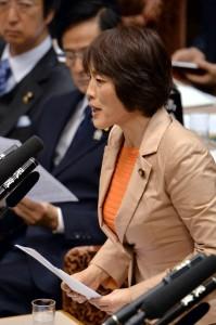 質問する田村智子議員=18日、参院予算委