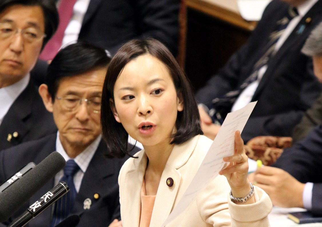 質問する吉良よし子議員=23日、参院予算委