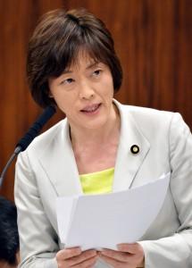 質問する田村智子議員=3月31日、参院文科委