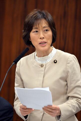 質問する田村智子議員=16日、参院文科委