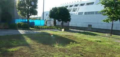 すでに撤去された6月やすらぎ公園のトイレ跡=東京都足立区6月