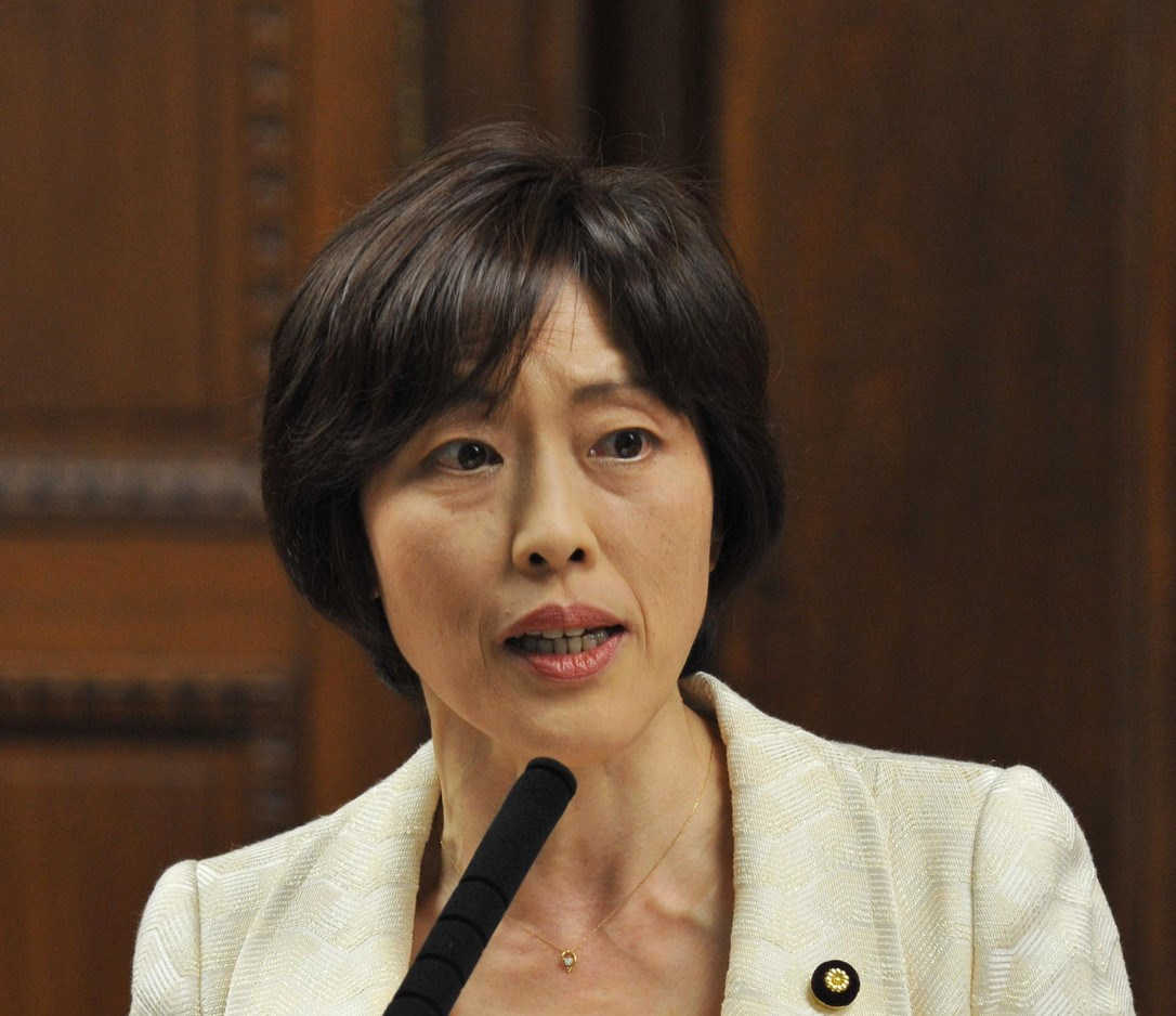 質問する田村智子議員=11日、参院決算委