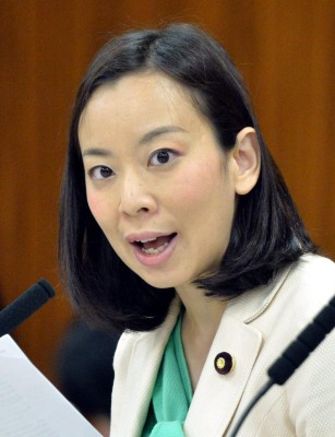 質問する吉良よし子議員=12日、参院総務委