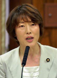 質問する田村智子議員=31日、参院内閣委(「しんぶん赤旗」提供)