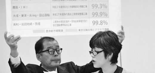 パネルを示して追及する和泉なおみ都議=14日、東京都議会