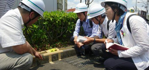 ヒアリの緊急調査の現場を視察する(右から)尾崎、白石、山添の各氏=20日、東京都品川区
