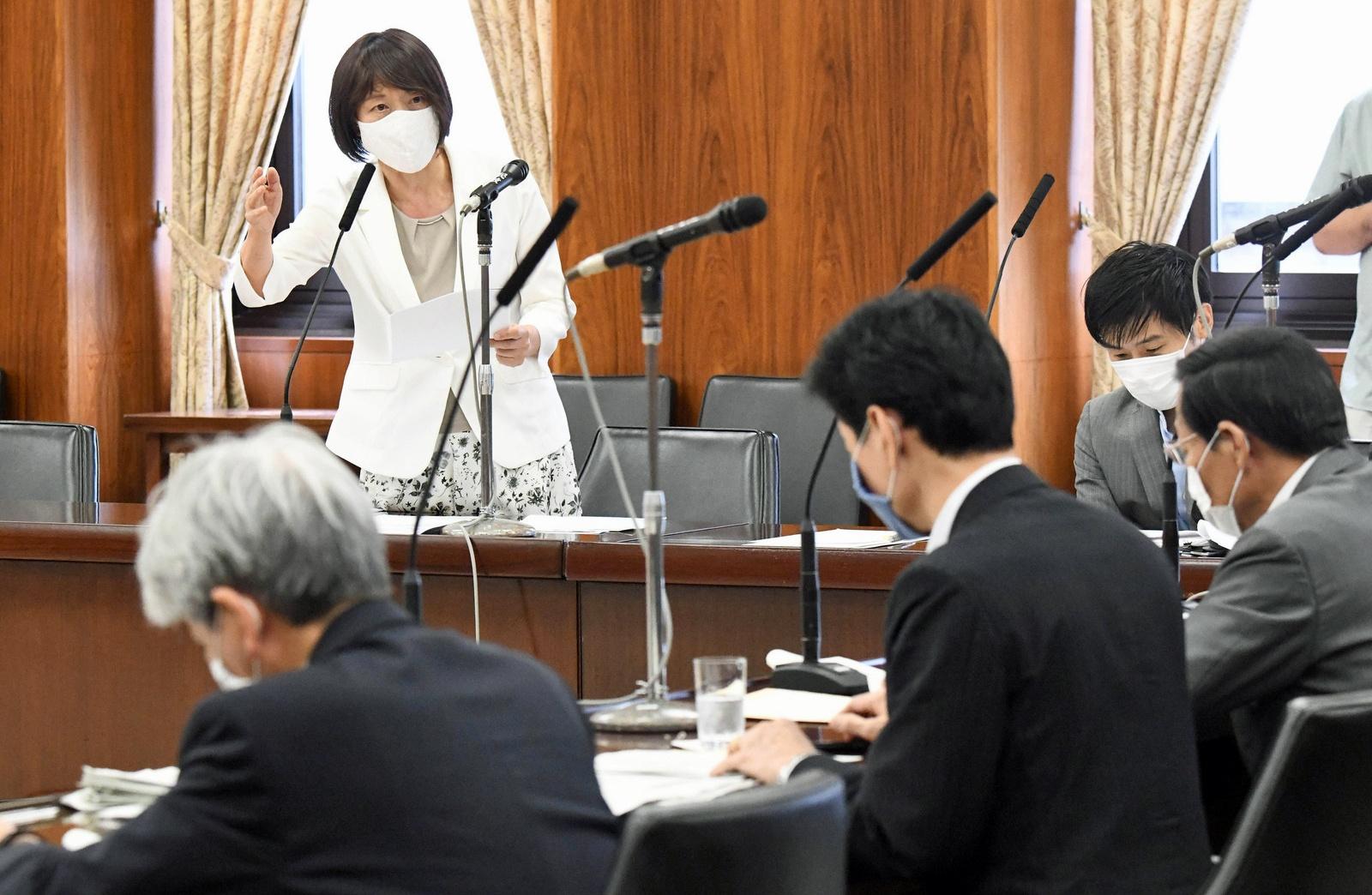 質問する田村智子議員=27日、参院内閣委